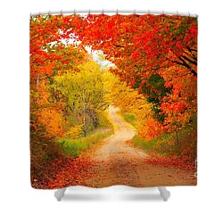 Shower Curtain featuring the photograph Autumn Cameo Road by Terri Gostola