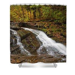 Autumn Cascade Shower Curtain by Michele Steffey