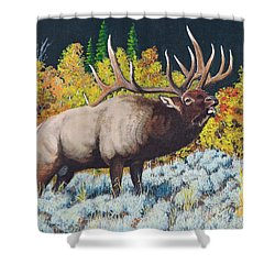 Autumn Challenge Shower Curtain