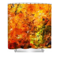 Autumn Colors Shower Curtain by Aaron Berg