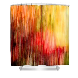 Autumn Colors In Abstract Shower Curtain