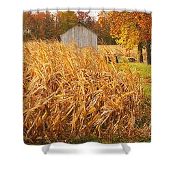 Autumn Corn Shower Curtain by Mary Carol Story