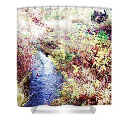 Shower Curtain featuring the photograph Autumn Creek by Vanessa Palomino