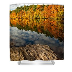 Autumn Day Shower Curtain by Karol Livote