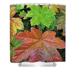 Autumn Devil's Club Shower Curtain by Cathy Mahnke