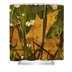 Autumn Dew Shower Curtain