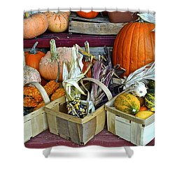 Autumn Display Shower Curtain by Frozen in Time Fine Art Photography