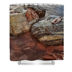 Autumn Drift Shower Curtain