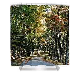 Autumn Drive Shower Curtain by Barbara Bardzik