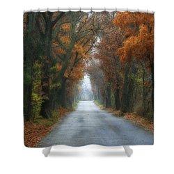 Autumn Drive Shower Curtain