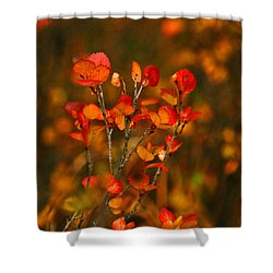 Autumn Emblem Shower Curtain by Jeremy Rhoades