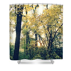 Autumn Evening Shower Curtain by Jessica Myscofski
