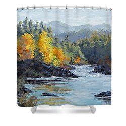 Autumn Falls Shower Curtain by Karen Ilari