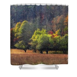 Autumn Field Shower Curtain