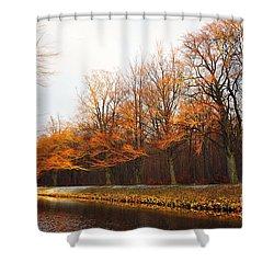 Autumn Fire Shower Curtain by Randi Grace Nilsberg