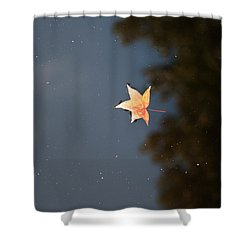Shower Curtain featuring the photograph Autumn Floating By by Rebecca Davis