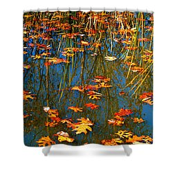 Shower Curtain featuring the photograph Autumn  Floating by Peggy Franz