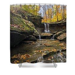 Autumn Flows Shower Curtain by James Dean