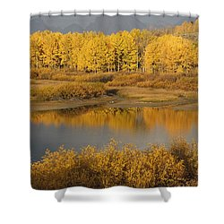 Autumn Foliage Surrounds A Pool In The Shower Curtain by David Ponton