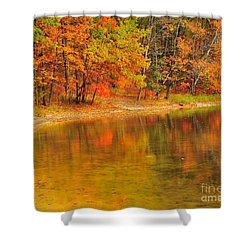 Autumn Forest Reflection Shower Curtain by Terri Gostola