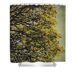 Shower Curtain featuring the photograph Autumn Glory by Ari Salmela