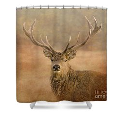 Magnificant Stag Shower Curtain