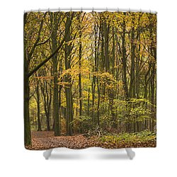 Autumn Gold Shower Curtain by Anne Gilbert