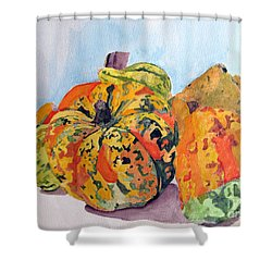 Shower Curtain featuring the painting Autumn Gourds by Sandy McIntire