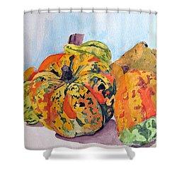 Autumn Gourds Shower Curtain