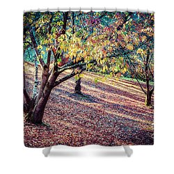 Autumn Grove Shower Curtain