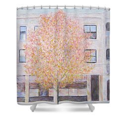 Autumn In Chicago Shower Curtain