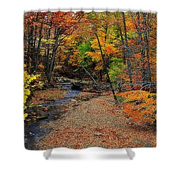 Autumn In Full Bloom Shower Curtain by Frozen in Time Fine Art Photography