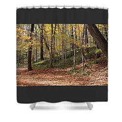 Shower Curtain featuring the photograph Autumn In Grant Park 4 by PJ Boylan