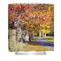 Autumn In Hyde Park Shower Curtain