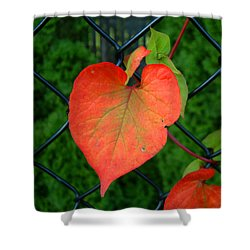 Autumn In July Shower Curtain by RC deWinter