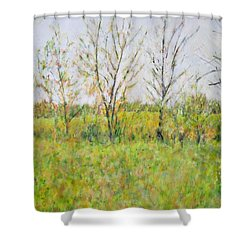 Autumn In Kentucky Shower Curtain