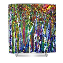 Autumn In Muskoka Shower Curtain by Claire Bull