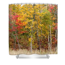Autumn In Muskoka Shower Curtain by Les Palenik