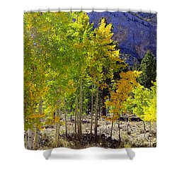 Autumn In Nevada Shower Curtain