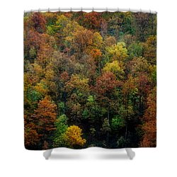 Shower Curtain featuring the photograph Colours Of Autumn by Marija Djedovic
