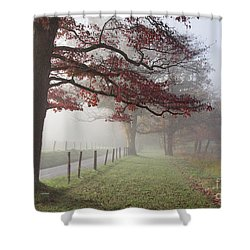 Autumn In The Cove IIi Shower Curtain by Douglas Stucky