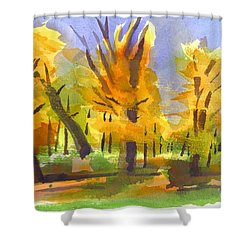 Autumn In The Forest Shower Curtain by Kip DeVore