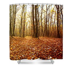 Autumn In The Forest With Red And Yellow Leaves Shower Curtain