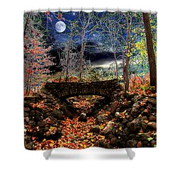 Autumn In The Meadow Shower Curtain