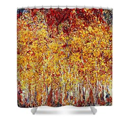 Autumn In The Pioneer Valley Shower Curtain