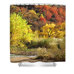 Autumn In Zion Shower Curtain