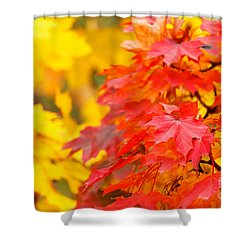 Autumn Is Beautiful Shower Curtain