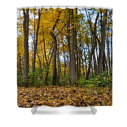 Shower Curtain featuring the photograph Autumn Is Here by Sebastian Musial