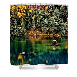 Autumn Jade Shower Curtain by Benjamin Yeager