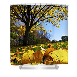 Autumn Landscape Shower Curtain by Elena Elisseeva